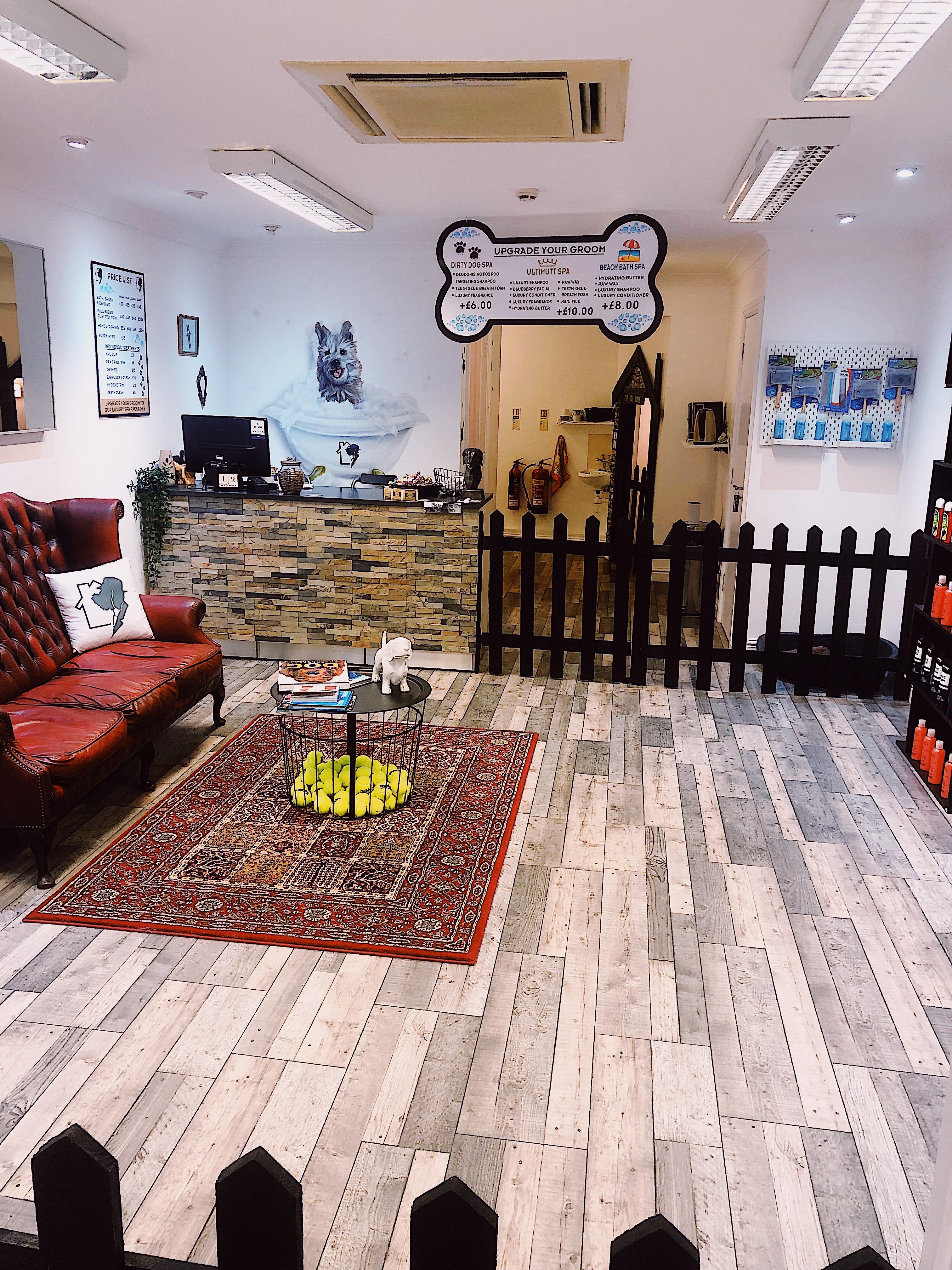 Inside The Dog Grooming Salon